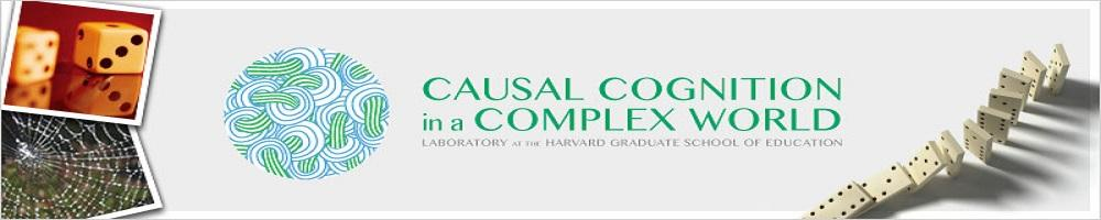Causal Cognition in a Complex World Lab